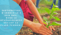 Communiqué de presse – Distribution d'arbres le 4 juin 2021